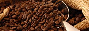 coffee beans corporate responsibility
