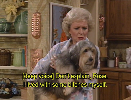 rose-golden-girls-dog