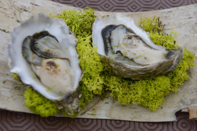 Flamed and smoked oyster duo
