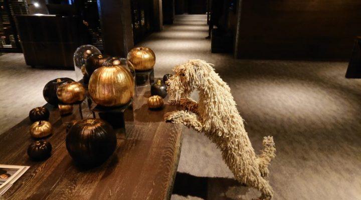 Dakota Hotel - lobby